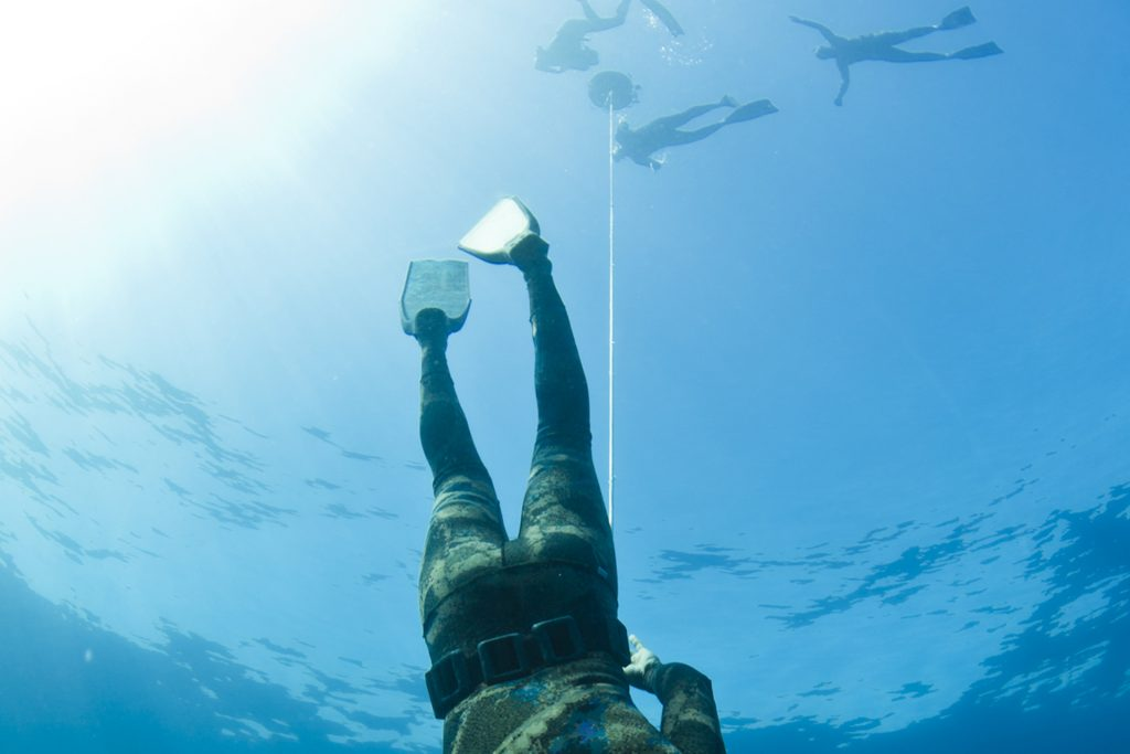 freediving 1